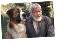 The Call Of The Wild How A Cg Dog Named Buck Held His Own With Harrison Ford The Great Celebrity